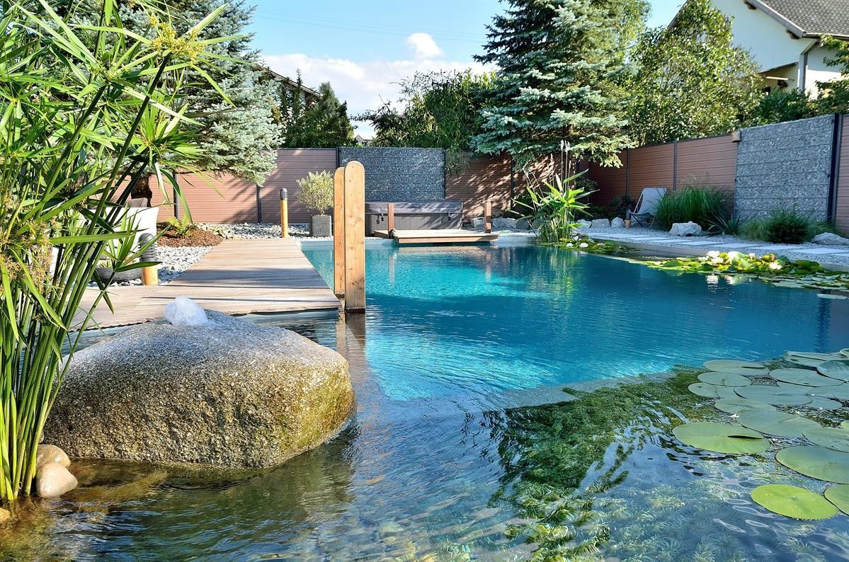 Biotop actualit i baignade cologique et living pools for Chlore dans la piscine