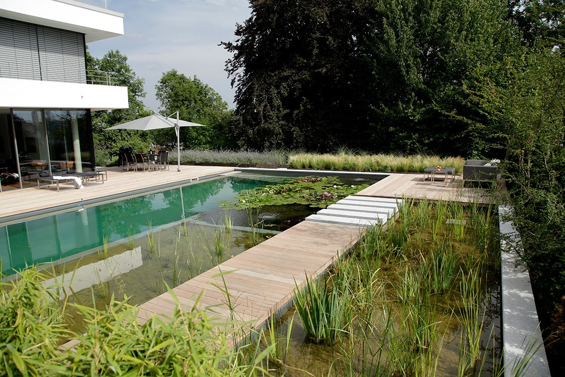 Biotop bassin miroir architectural pour la baignade for Bassin miroir