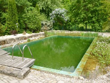 baignade ecologique en Allemagne reconversion en Living-Pool