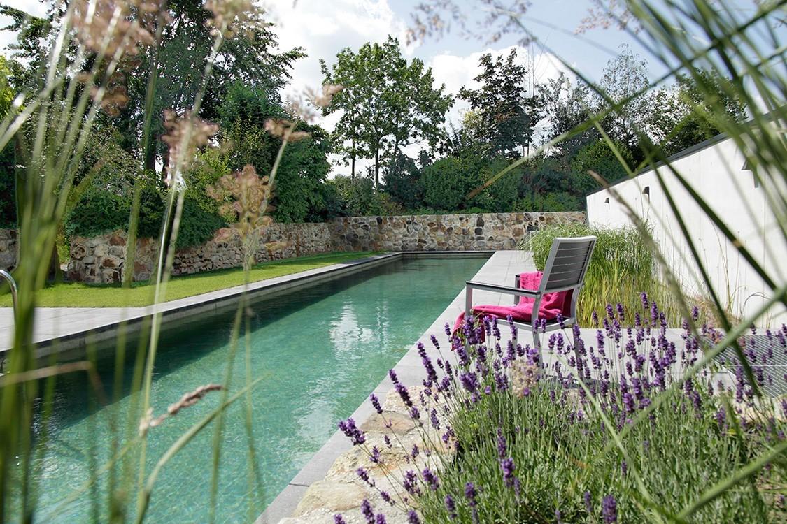 biotop - living-pool avec bassin en béton ciré